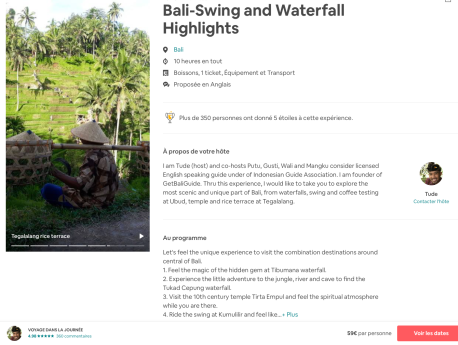 Excursion Bali-swing and waterfall highlights
