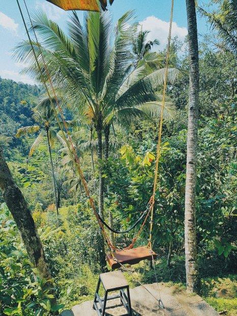 Balançoire au dessus de la jungle - Kumulilir - The Chris's Adventures