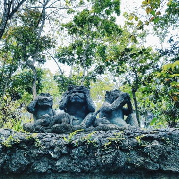 Les singes de la sagesse - The Sacred Monkey Forest Sanctuary - The Chris's Adventures